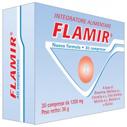 FLAMIR